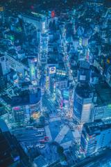 東京夜景 ③  SHI・BU・YA