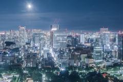 東京タワーから見る景色