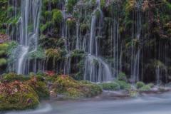 冬の元滝伏流水 ⑥