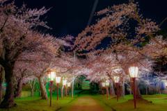 真夜中の荘内神社