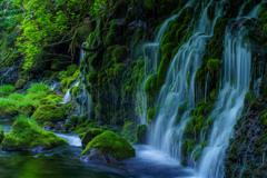 晩春から初夏へ    元滝伏流水