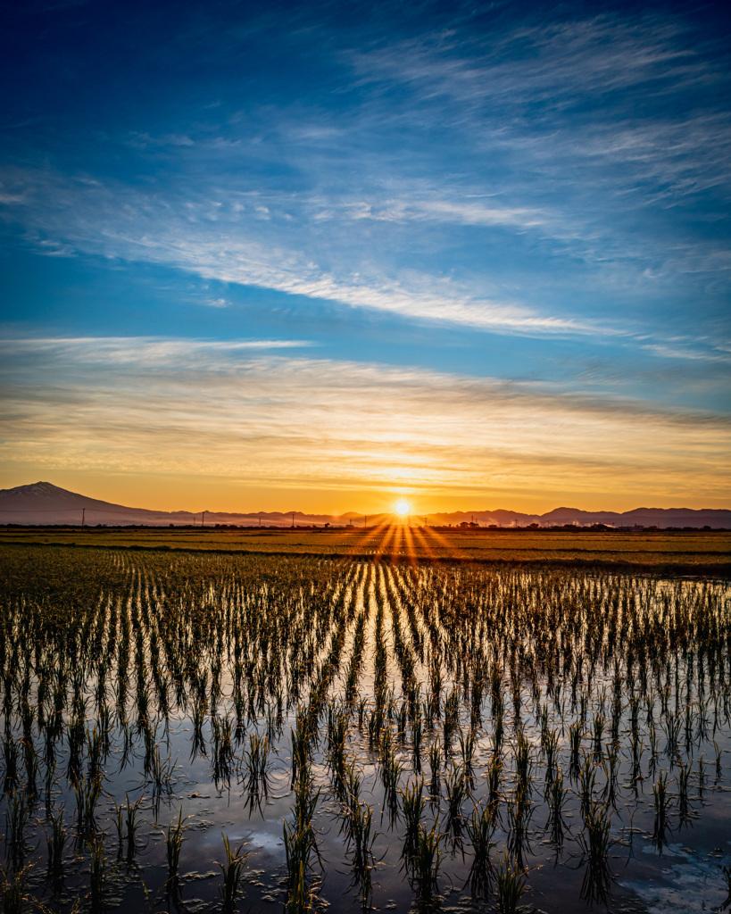 朝焼けと田園風景