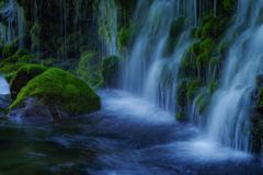 伏流水の清流