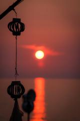夏と海と太陽と