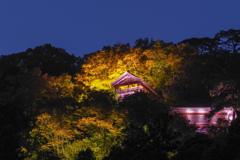 山寺ライトアップ その3
