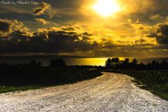 最果ての秋 稚内 白い貝殻の道 ~なだらかな白い坂道を駆け上がり、振り返ると。~
