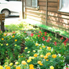 芦ノ牧温泉駅の花壇