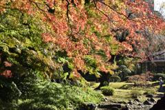涵徳亭の庭園望む