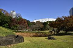 小石川後楽園からドーム