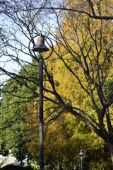 公園の街燈1