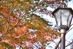 公園の街燈2