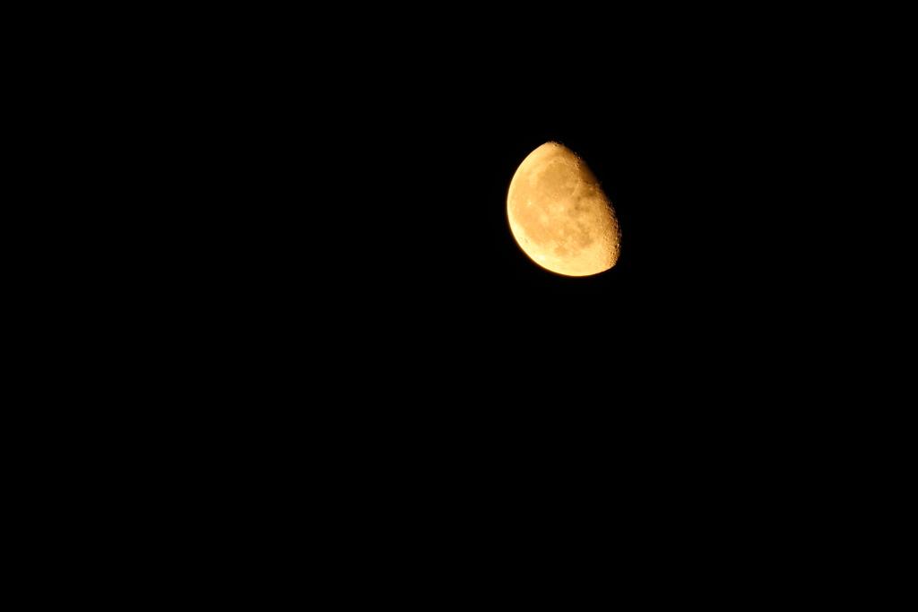 綺麗な月でした♪