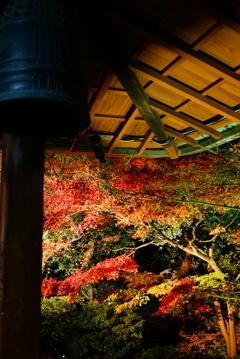 京都 圓徳院にて