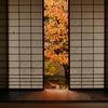 京都雲龍院2