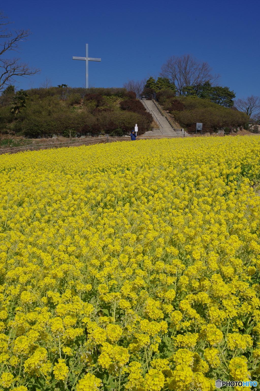 愛知牧場の春2 ~ 十字架の丘