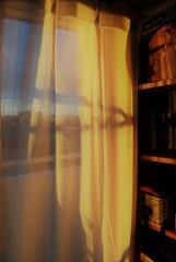 日常の光景 ~朝のひかり~