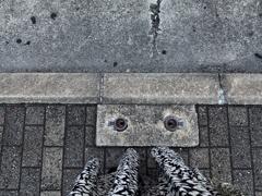 目が合う 2