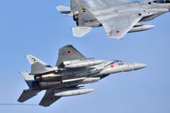 F-15 (第306飛行隊)