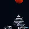 姫路城と月