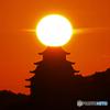 姫路城と夕日