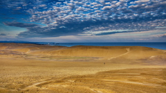 砂の海と海