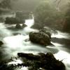 朝霧の渓谷