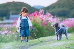 初めてのお散歩