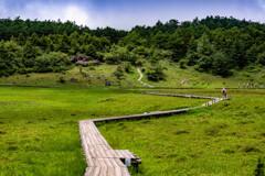 池之平湿原