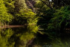 里山の春 10 瀬上池