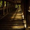 祈りへの399段 登廊 #2