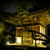 夜の旧天瑞寺寿塔覆堂 #1
