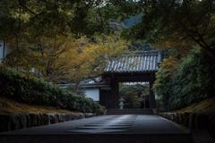 静寂の秋 南禅寺最勝院