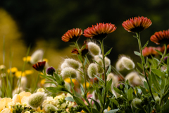謳歌する春
