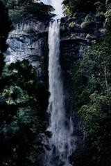 直瀑 那智の滝
