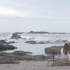 城ヶ島で夕刻を撮る人2