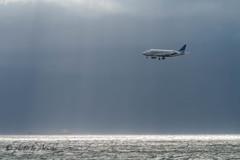 海レフで浮かび上がった機体