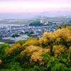 俯瞰新幹線