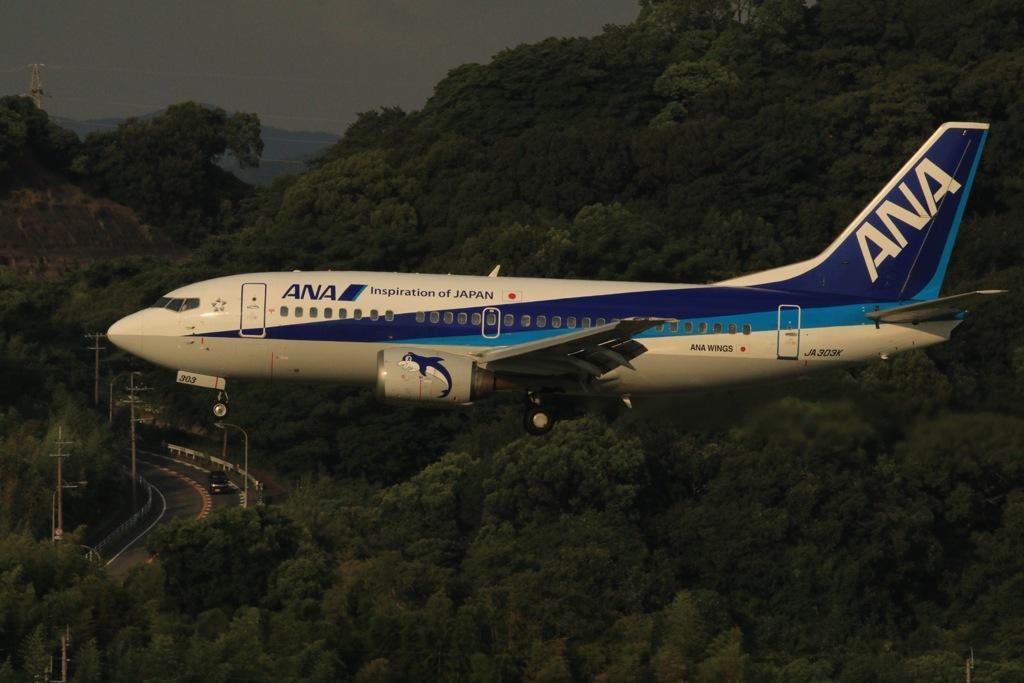 Boeing737-500スーパードルフィン