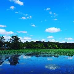 雲たゆたう蓮池