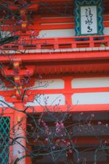 清水寺と梅
