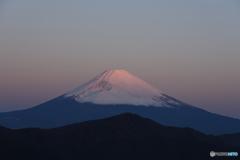 朝の富士山1