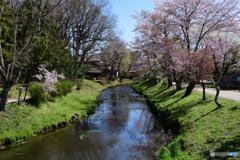 のどかな春2
