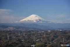 湘南平からの富士山