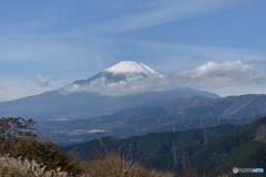 大野山から見た富士山