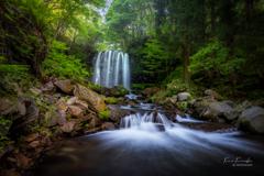 森に潜む滝