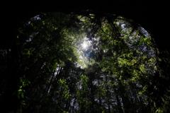 天然の天窓