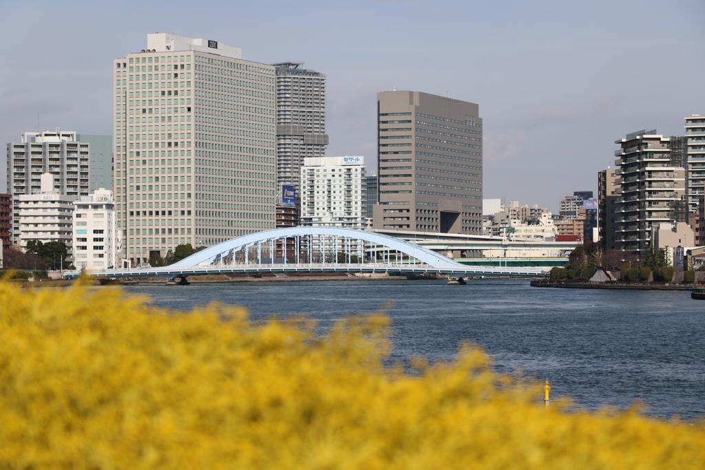 佃島から永代橋