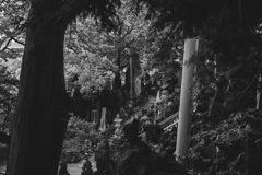 成田山モノクローム2