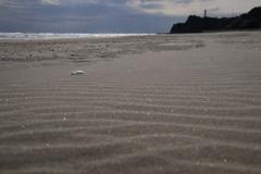 灯台の見える海岸