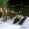 川の流れ、時の流れ